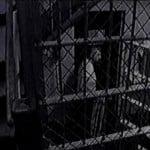 Rare photo of John Wayne Gacy in his cell awaiting his execution