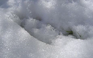 Modern day example of devil's footprints in snow