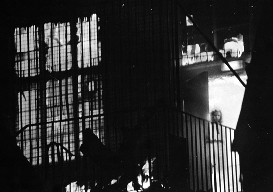 The Wem Town Hall ghost