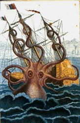 Legends of the giant squid go back to the 13th century