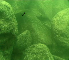 Photo of stones making up the mysterious stone structure found beneath the Sea of Galilee