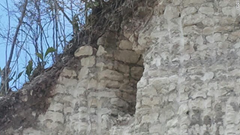 Destroyed Mayan Pyramid room clearly visible