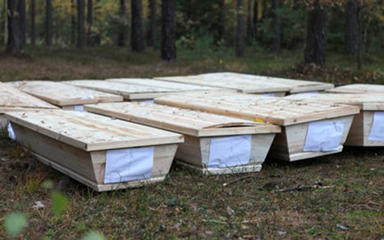 Coffins with dead bodies dumped in the woods