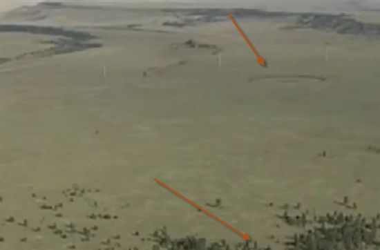 Crop circle near dead elk in northern New Mexico