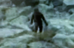 Photograph of Yeti travelling through snow