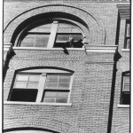 Dallas Police Sgt. Gerald Hill leaning out the window of the Texas School Book Depository pointing to corner window where sniper's nest was found