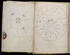Page from the Voynich Manuscript with strange charts