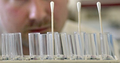 Contaminated cotton swabs throw off DNA evidence