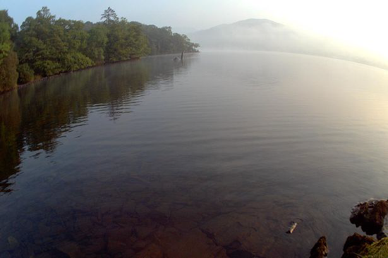 Unaltered photo of the Best of Bowness (aka Bownessie or Lake District Lizard) taken in 2014