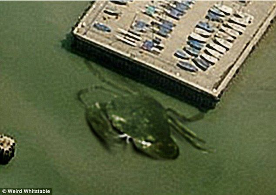 Crabzilla - giant 50-foot crab caught in aerial photo over Whitstable harbor
