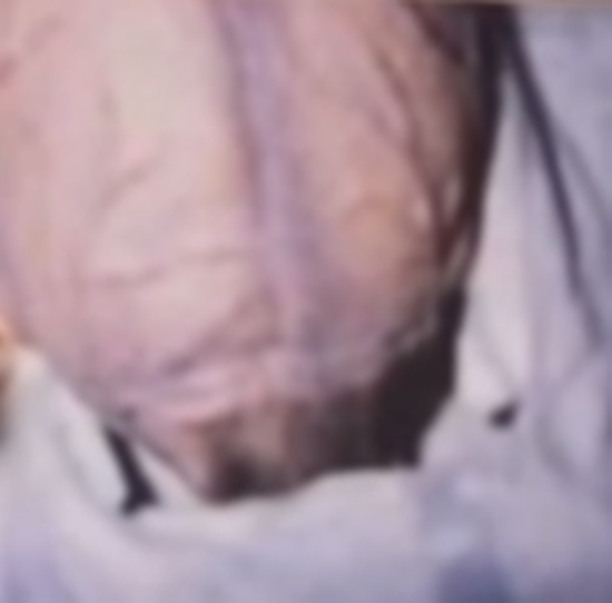 Boyd Bushman photo of the alien's unusual head crease