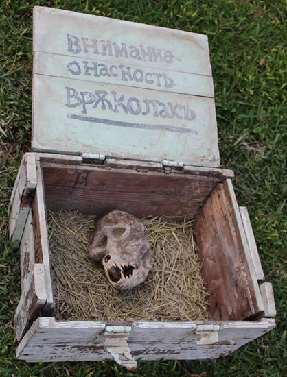 Werewolf skull found by farmed buried in chained box