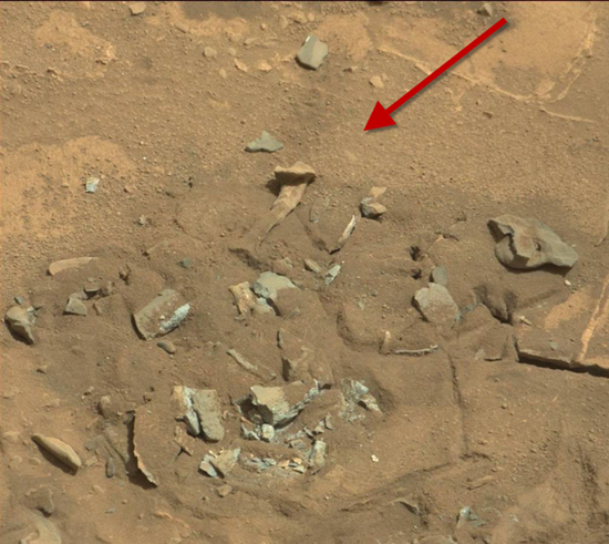 Close-up of anomalous bone (thigh bone) found on Martian surface