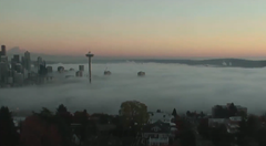 Mysterious dense fogbank that rolled into Seattle spreading stinky smell throughout the city