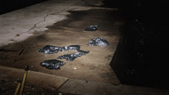 Bags containing the body parts of Morris Black