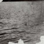 Photograph taken by Colonel Robert Wilson on Loch Ness in April, 1934 (original uncropped version).