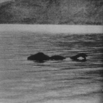 Taken in 1972, this photo shows the Loch Ness Monster moving towards the right with its hump protruding well above the surface and its mouth open.