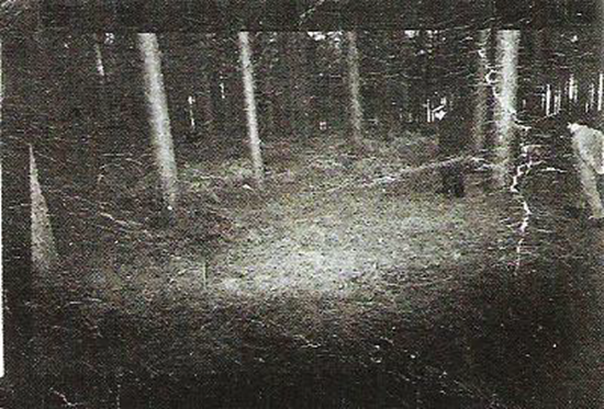 Rendlesham Forest UFO event near Royal Air Force base in Suffolk (1980)