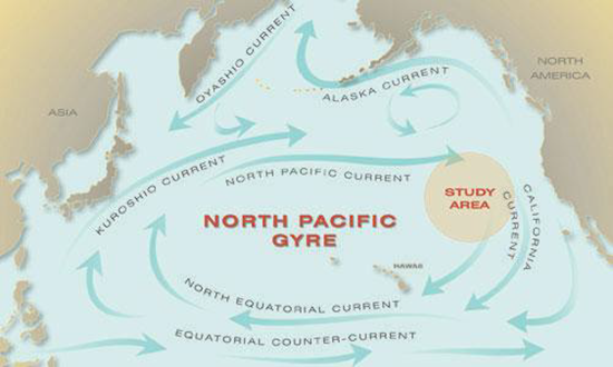 Map shows the ocean currents between Fukushima, Japan and North America (United States and Mexico)