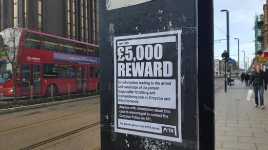 Reward sign offering reward for arrest and capture of the Croydon Cat Killer