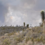 """""""White truck"""" security team block the road leading toward the Area 51 fire"""