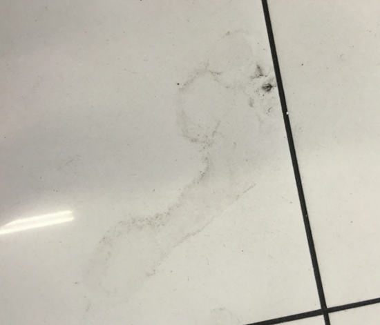 Why are ghostly barefoot footprints appearing in this small retail store overnight?