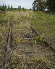 Remnants of railroad tracks in Poland near rumored location of Nazi Gold Train