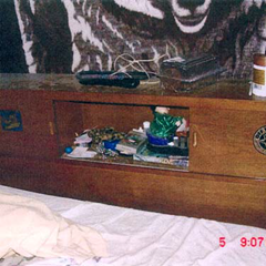 Headboard storage space in Robert Pickton's bed contained several sex toys