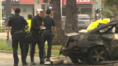 Police investigating the burnt out shell of Michael Hastings' car