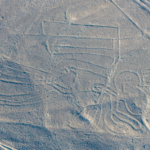 Nazca Lines - The pelican