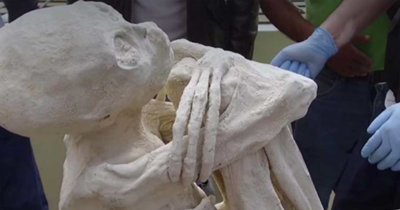 Mummified skeletal remains of Maria with elongated fingers