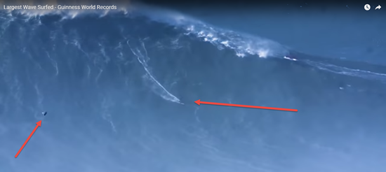 Bird follows surfer on freakish massive 80 foot wave in Portugal